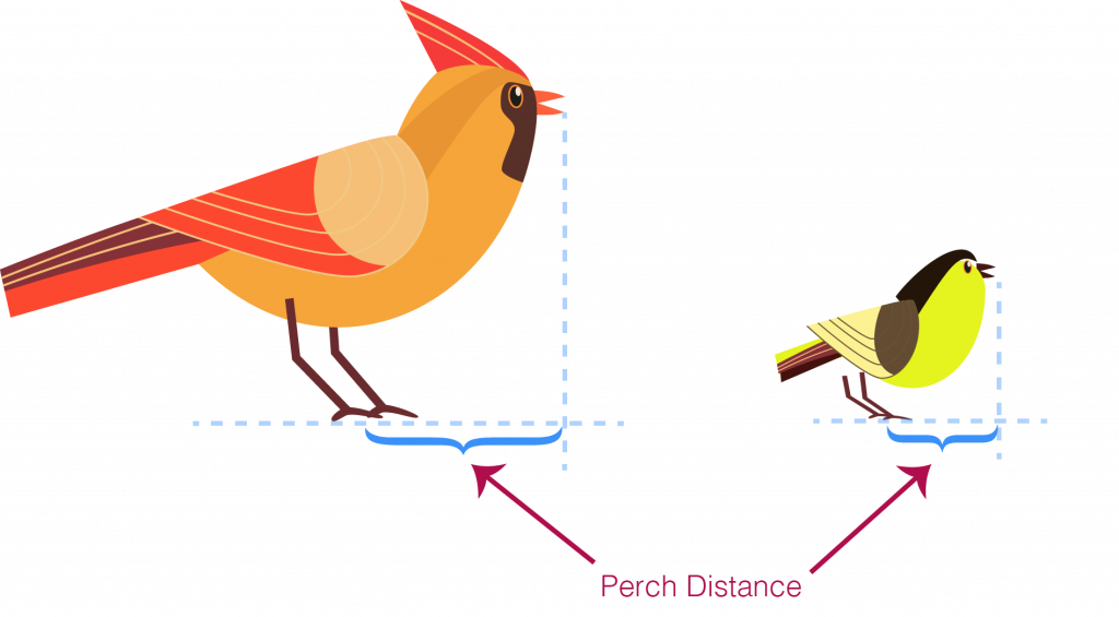 illustration of cardinal and chickadee showing the perch distance for each