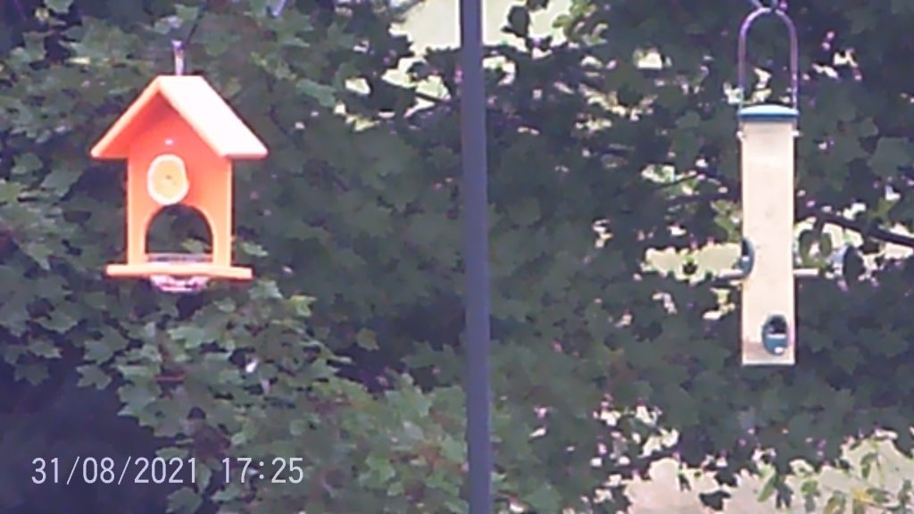 Photo taken from the Camonity 5MP binocular camera