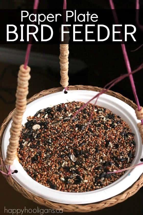 diy paper plate cardinal bird feeder