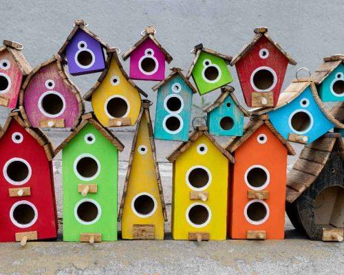 10 DIY Cardinal Bird Feeders They'll Actually Use